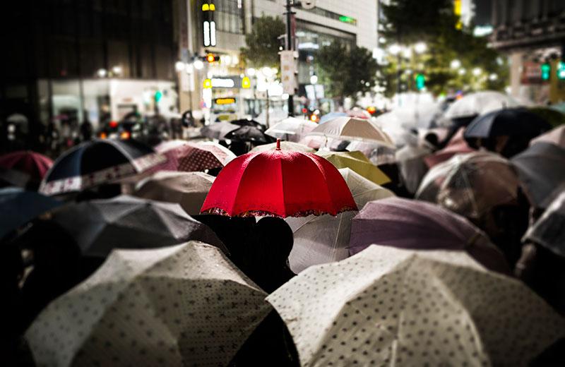 People Walking with Umbrellas in City - Personal Umbrella Insurance Ontario - DG Bevan Insurance Brokers